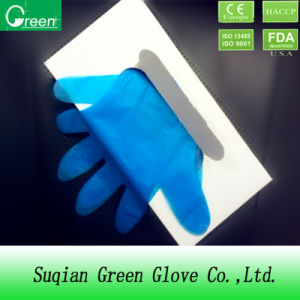 Cheap Colorful Cast Polyethylene Gloves pictures & photos