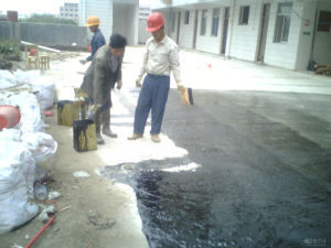Polyurethane Waterproof Coating pictures & photos