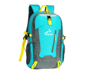 Cool Professional Popular Traveling Backpacks for Men and Women (BH-NH-16027) pictures & photos