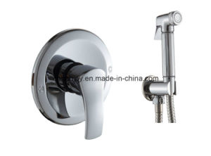 Build in Brass Shower Faucet with Shower Kit (H01-110) pictures & photos