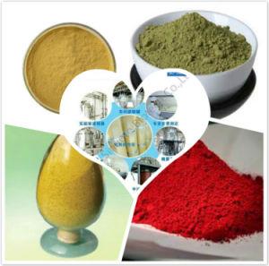 Kiwi Fruit Enzyme Powder / Fruit Enzyme Powder