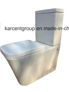 Two Piece Ceramic Toilet Washdown Toilet Water Closet Wc 10100b pictures & photos