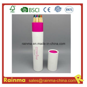 High Quality Color Pencil in Paper Tube Holder pictures & photos