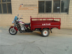 150cc, Three Wheel Motorcycle, China New Style, Cargo Tricycle, High Quality, Hot Sale, Gasoline Trike, Tuk Tuk (SY150ZH-C10) pictures & photos