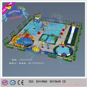 Giant Inflatable Water Slide Water Park with Metal Frame Pool (Lilytoys-wp-051) pictures & photos