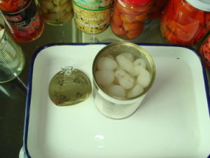 425g Canned Longan in Light Syrup pictures & photos