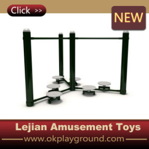Superior Quality Funny Outdoor Fitness Equipment (12166C) pictures & photos