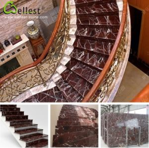 M826 Rosso Levanto Purple Marble Step/Stairs/Treads with Bevel Edge pictures & photos