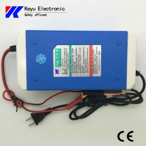 Intelligent Charger (free switch between 12V and 24V) pictures & photos