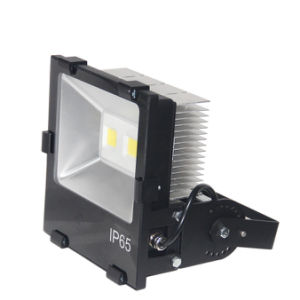Waterproof LED Floodlight with IP65 COB LED pictures & photos