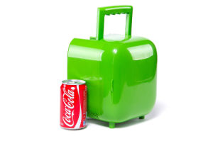 Mini Electronic Fridge 3liter, DC12V, AC100-240V for Car, Office or Home Use pictures & photos