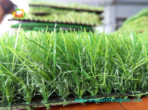 Good Quality Landscaping Artificial Turf Flooring for Outdoor Garden Decoration pictures & photos