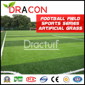 Excellent Quality Artificial Turf (G-5006) pictures & photos