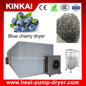 Widely Used Hot Air Circulating Food Drying Machine / Food Dehydrator pictures & photos