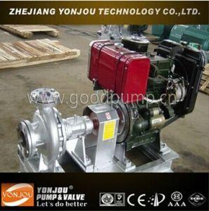 Diesel Enigine Self Priming Thermal Oil Pump (LQRY) pictures & photos