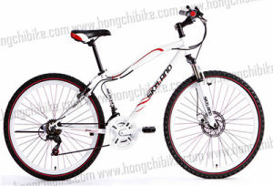 """26""""Alloy Frame MTB City Bike MTB City Bicycle pictures & photos"""