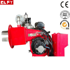 High Efficiency Gas Burner for Boilers or Other Heating Devices pictures & photos