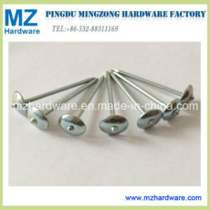 Bwg9*2.5 Smooth Plain Shank Umbrella Head Roofing Nail pictures & photos