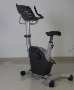 CE Approved Commercial Upright Bike (SK-EU1) pictures & photos