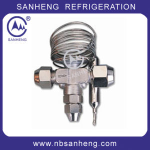 High Quality TV Expansion Valve pictures & photos