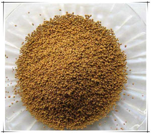 China Supply Feed Additive L-Lysine 65% pictures & photos