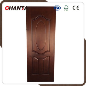China Door Skin with Good Design pictures & photos