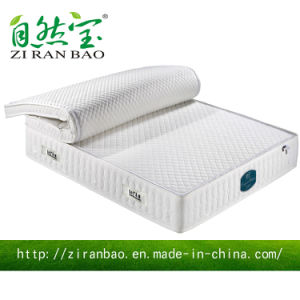 Separable Nature Sleep Latex Pocket Spring Mattress (ZRB-863)