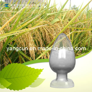 Natural Fumalic Acid 98% with Kosher Certificate (CAS: 1135-24-6) pictures & photos