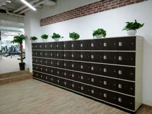 5 Door Each Column Storage Locker for School or Public Place pictures & photos