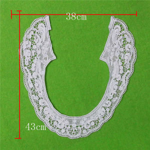 Cotton Crochet Lace Collar (cn142) pictures & photos