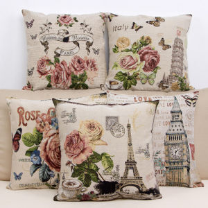 Decorative Printed Cushion for Home pictures & photos
