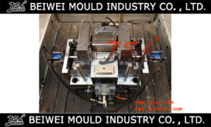 Commercial Wet Mop Bucket & Wringer Injection Plastic Mould pictures & photos