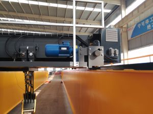 High Quality Double Girder Overhead Crane with Electric Hoist pictures & photos