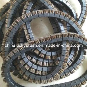 Grey Colour Bristle Chain Brush for 43PCS (YY-403) pictures & photos