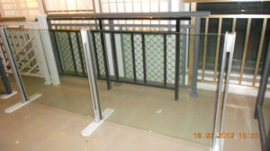 Aluminum Fence (TS-321) pictures & photos