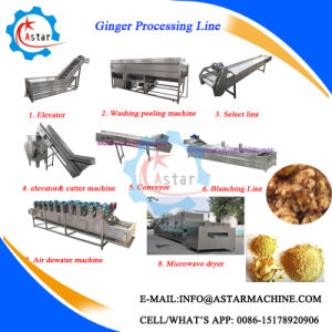 100-1000kg/H Ginger Powder Ginger Flake Making Machine pictures & photos