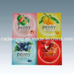 Plastic Packaging for Facial Mask (DQ126) pictures & photos