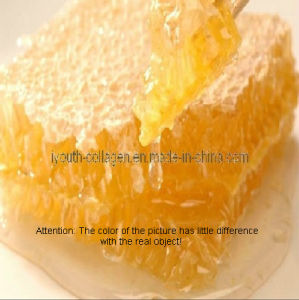 100% Natural Royal Jelly, Bee Product pictures & photos