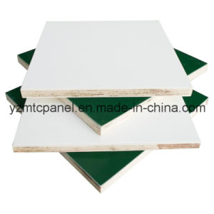 UV Resistance FRP Plywood Panel for Trailer pictures & photos