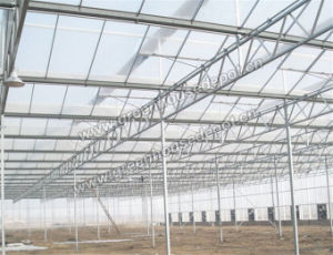 Hot-DIP Galvanized Steel Structure for Venlo Type Greenhouse pictures & photos