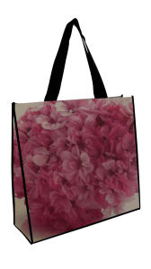 Reusable Printed Non-Woven Bags for Garments Packing (FLN-9057) pictures & photos