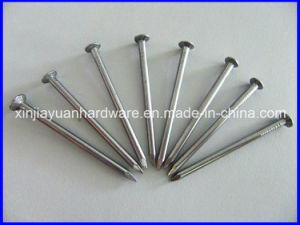 Flat Head Diamond Point Common Nails pictures & photos