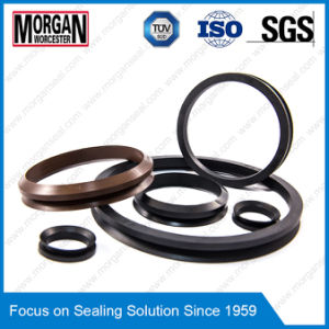 FKM/NBR End Face Rubber Dirt/Water Seal V Ring pictures & photos