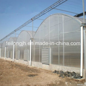 Multi-Span Gothic Film Greenhouse with PE Drop-Proof pictures & photos