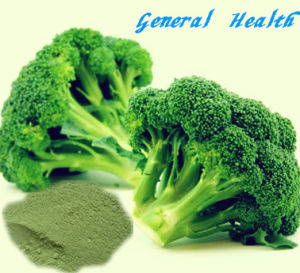 Natural Spray Dried Broccoli Powder (Fruit and Vegetable Powder)