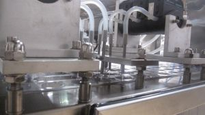 Dpp-140 Blster Packing Machine for Liquid pictures & photos
