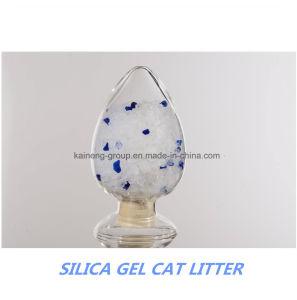 Blue Cat Litter pictures & photos