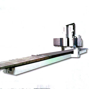 CNC Fixed Beam Rail Milling Machine pictures & photos