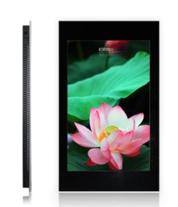 42inch Dynamic LCD Advertising Display pictures & photos