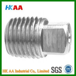 Metric External Square Head Pipe Plug (Stainless Steel) pictures & photos